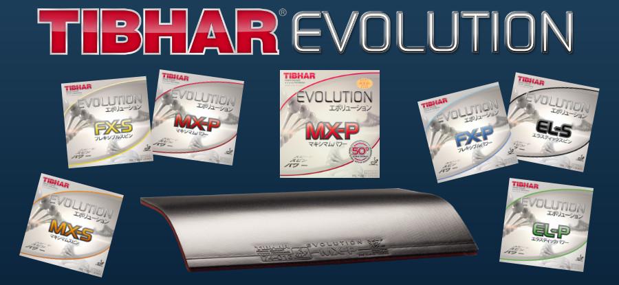 Tibhar Evolution Beläge